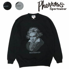 Pherrow's 19W-PS-B1画像