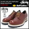 STUSSY × BePositive Deluxe Shoe Brown DELUXE 4038058画像