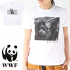 "WWF Tee ""NATURE THRIVE""画像"