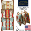 PENDLETON Chief Joseph Pillows XP573画像