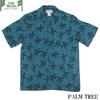 TWO PALMS PALM TREE画像