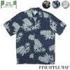 TWO PALMS PINEAPPLE MAP画像