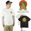 TMNT Turtle Power Regular S/S Santa Cruz Mens T-Shirt画像
