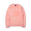 NIKE AS M NSW CE CRW FT WASH BLEACHED CORAL/SUMMIT WHITE AR2930-697画像