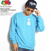 Fruit of the Loom FRUIT DYED CREWNECK SWEAT -BLUEBERRY- 0123-504FTA画像