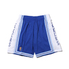 Mitchell & Ness NBA ALTERNATE SWINGMAN SHORTS LAKERS 96-97 ROYAL BLUE SMSHGS18030-LAL画像