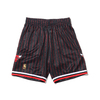 Mitchell & Ness NBA ALTERNATE SWINGMAN SHORTS BULLS 96-97 BLACK SMSHAC18022-CBU画像